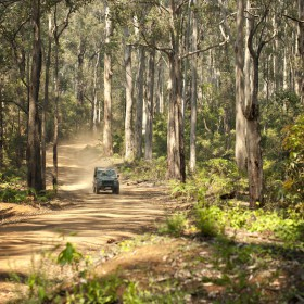 4WD on gravel road in forest credit www.margaretriver.com (2)