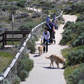 pet_friendly_pathway