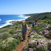 Group hiking Cape to Cape Track credit www.margaretriver.com (2)